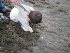 海辺で遊ぶ