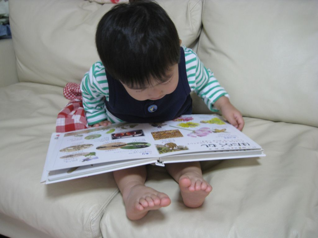 育児びんびん物語 >  アルバム >  むしの本を読む