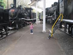 機関車がいっぱい