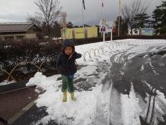 雪で遊ぶせんのすけ